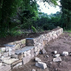 The idea for the bench came naturally as we had to curve the hedge around the root formation of the tree on the old Cornish hedge.